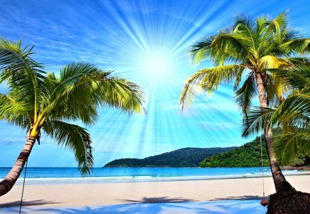 tropical desktop backgrounds free
