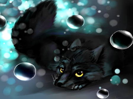 Black Fox Abstract Foxes And Baby Foxes Wallpapers And