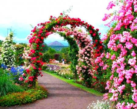 Beautiful garden flowers nature background wallpapers for Beautiful garden images