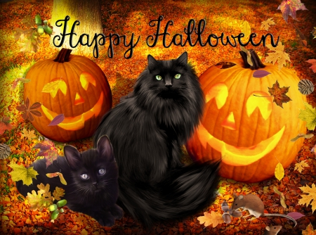 Cute Halloween Cats☻ ♥ - Cats & Animals Background ...