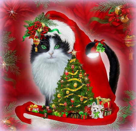 �cat in santa hat� cats amp animals background wallpapers
