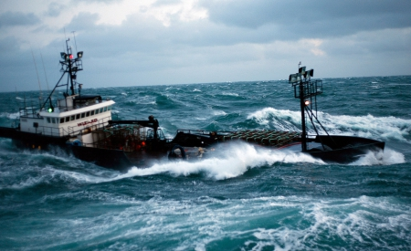Wizard deadliest catch crab fishing boat quota for Alaska commercial fishing jobs