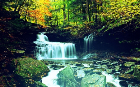 Waterfall In Forest Forests Nature Background Wallpapers On Desktop Nexus Image 1822119
