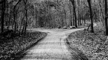 Fork in the road black and white
