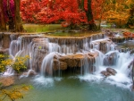 Forest cascades in autumn