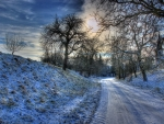 Winter Road in HDR