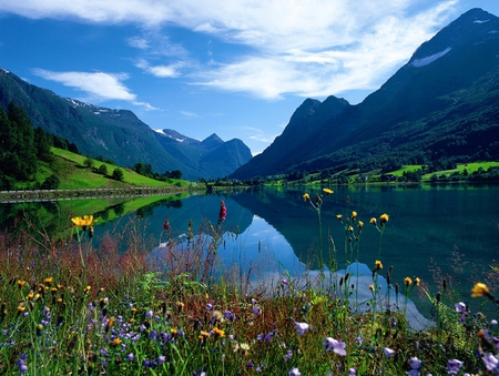 norwegian summer   lakes amp nature background wallpapers on