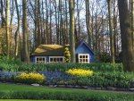 Sweet Little House in Holland