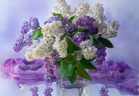 Still life - flowers, delicate, beautiful, soft, pretty, lovely, vase, purple, nice, lilav, still life, white, violet, bouquet, vail