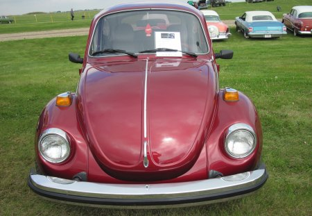 1974 Volkswagen - green, photography, volkswagen, burgundy, nickel, car