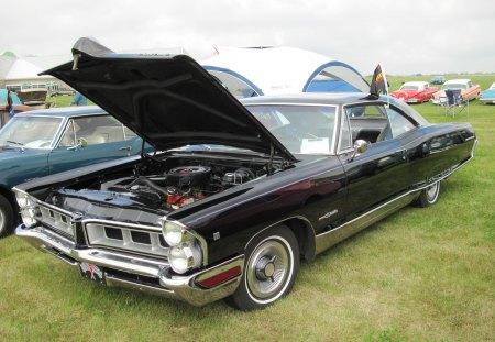 1965 Pontiac 2 doors Hard top v8 - green, Photography, black, Headlights, Pontiac, tire, nickel, grass, engine, car