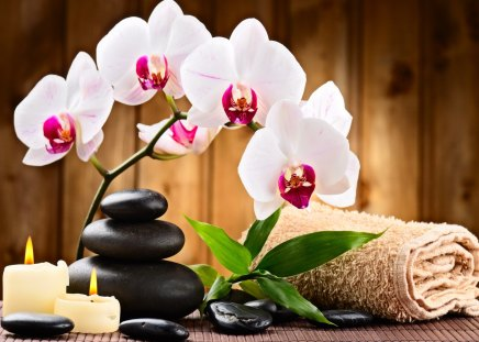 Spa relax - flowers, candles, beautiful, towel, pretty, lovely, exotic, leaves, relax, nice, spa, orchids, stones