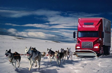 Direct delivery - snow, winter, clouds, truck, huskies