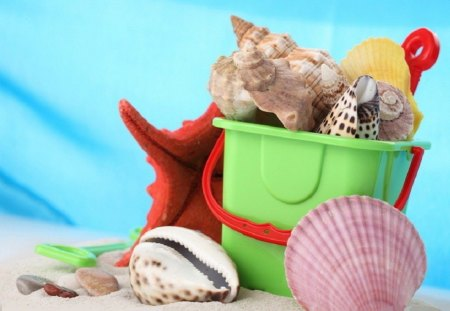 Summer time - green, summer, fun, bucket, starfish, sand, beach, sea shells, spiral, red, shells, conch shell