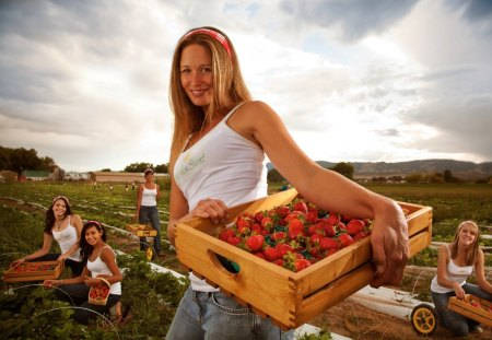 Sweet Strawberries - beautiful, country, strawberries, photography, woman, smile, photoshop, farm, work, sweet