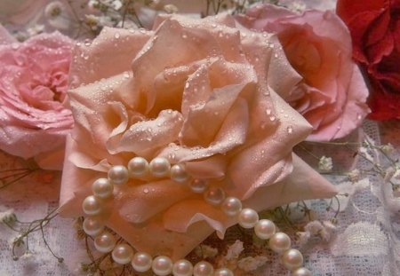roses and pearls - photo #36