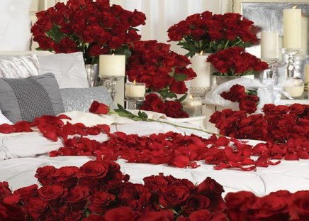 Roamntic Bedroom Flower  Roamntic Bedroom Flower Roses Candles Romantic  Nature Wallpapers Desktop Nexus. Roamntic Bedroom Flower  Roamntic Bedroom Flower Spread Candle