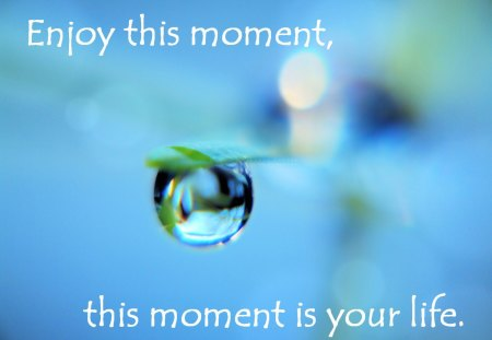 This Moment ..... - water, this moment, drop, quote, life