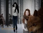 Bella & Renesmee & Wolf Pack