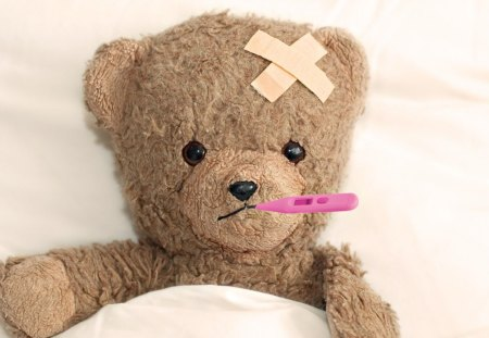 Teddy is Sick - well, teddy, sick, potography