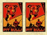 Obey Your Pit Bull!!