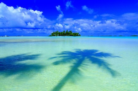 TROPICAL ISLAND - tropical climate, tree, beauty, society islands, beach, water, scenic, polynesia, palm tree, beauty in nature, french polynesia, shadow, sky, coast, resort, horizon over water, island, clouds, planting, water line, tahiti, sea, pacific islands, nobody, windward islands