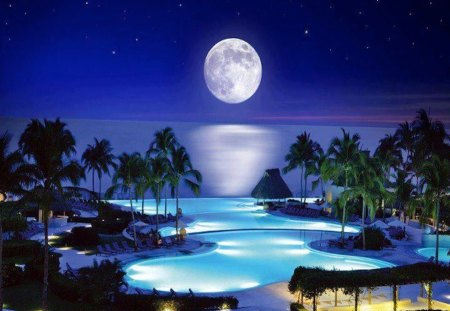 Tropical Moon - moon, moonlight, blue, night, beach, tropical, water