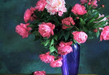 Peonies in blue - flowers, pink, white, blue, peonies, vase