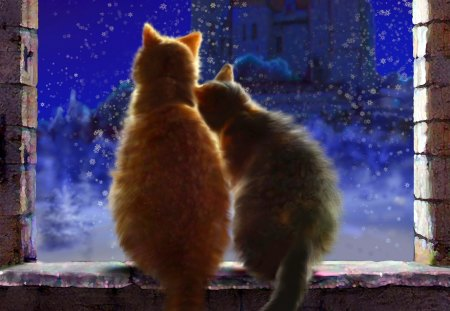 Cats love in winternight - animals, amazing, beautiful, blue, blue dreams, romantic, night, love, loved, windows, cats, colors, color, lovely, c, peaceful, winter, romance