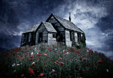 Imaginary Landscapes - house, poppies, imaginary, landscapes