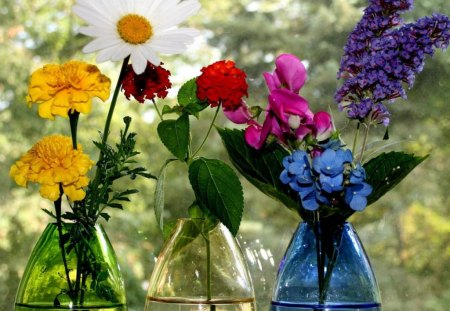 BEAUTIFUL STILL LIFE - flowers, vases, pretty, beautiful
