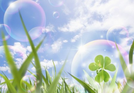 Eco Concept Photos - Blue sky and Gassland, bubbles and clover - abstract, bubbles, gassland, blue sky, clover, cg