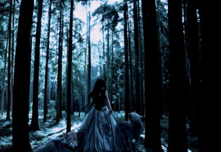 Girl with Wolves - girl, wolves, forest, fantasy, woods