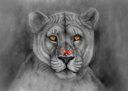 I'M CONFUSED - funny, lioness, abstract, painting, art