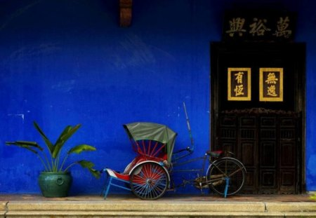 Asian Still Life - bike, blue, wall, pot, door, bicycle, flower, photo, picture, colour, color, ideogram, plant, wallpaper, photography, still life, asian, image, pic, asia