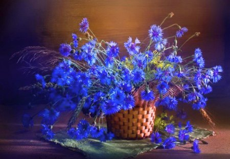 I've got the blues - flowers, blue, basket, petals, table