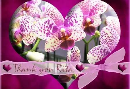 ♥ Thank You Heart For Rita ♥ - flowers, thank you, violet, hearts, orchids, bow