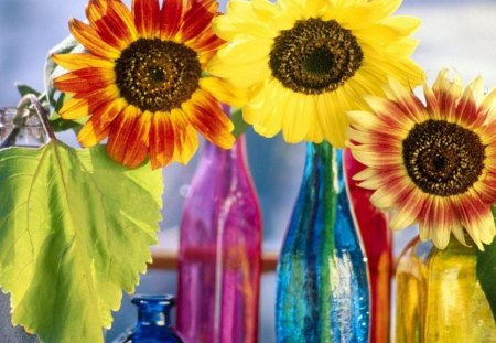 Coloured Bottles Spouting Colour. - of, a, very, nice