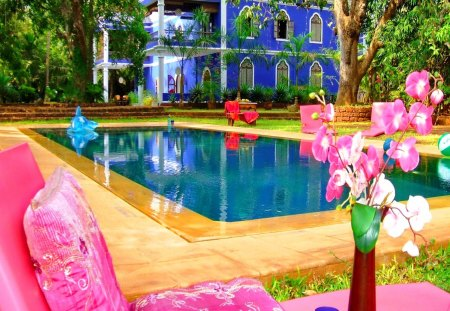 Place for relax - flowers, mirrored, reflection, pink, hotel, tree, exotic, water, relax, orchids, holiday, summer, place, rest, destination, pool, vase, sun bed, cuba, swimming pool, america