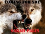 Wolves- Coming for you Sarah Palin