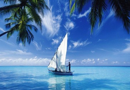 Sailing on the Deep Blue Sea - tropical, beautiful, boat, sky, blue, sail, sea, ocean