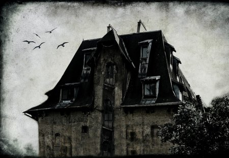 GHOST HOUSE - dark, textures, hounted house, ghost house, bw, art, neverland, birds