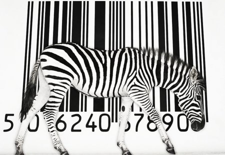 BIZARRE BARCODE - antelope, stripes, animals, africa, commerce, abstract, black and white, zebras
