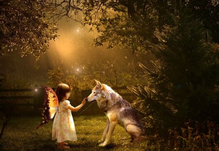 Forest fairy - touch, magic, little, enchanted, forest, nature, trees, girl, light, wolf, darkness, white, wings, dark, night, twilight, animal, sweet, fairy, evening, lady, angel