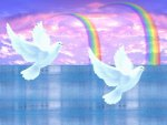 2doves and 2 rainbows