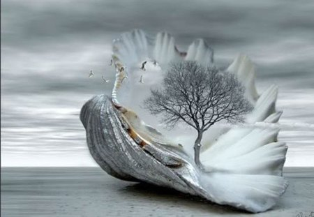 cool morning day - tree, surreal, shell, fantasy