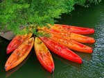 Red canoes in river