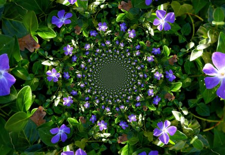 The magic of flowers - green, fractals, flowers, blue, violets