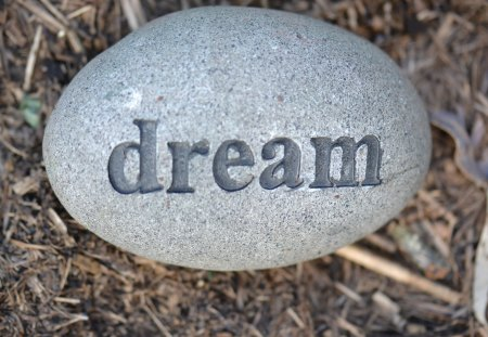 Dream - dream, garden, rock, inspirational