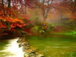 Beautiful Misty Forest River Creek